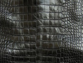 Garment Grade Alligator Leather in Black Waxy Finish