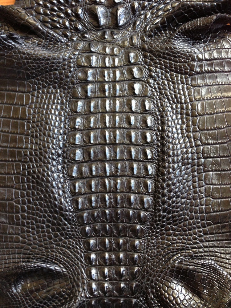 Alligator Leather Roje Exotic Leather