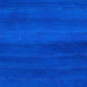 Eel Leather - Blue