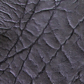 Elephant Leather - Black