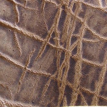 Elephant Leather - Vintage Peat