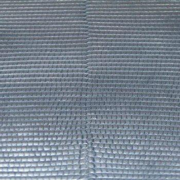 Lizard Leather - Blue