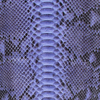 Python Leather - Blue w/ Markings