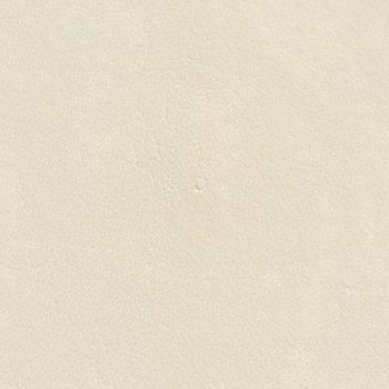 Stingray Leather - Ivory Shagreen