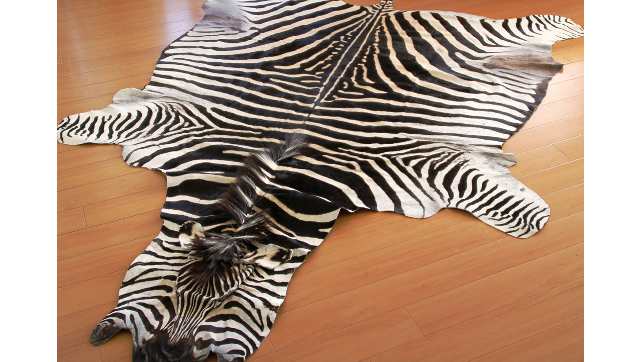 Zebra Hides And Rugs Roje Exotic Leather