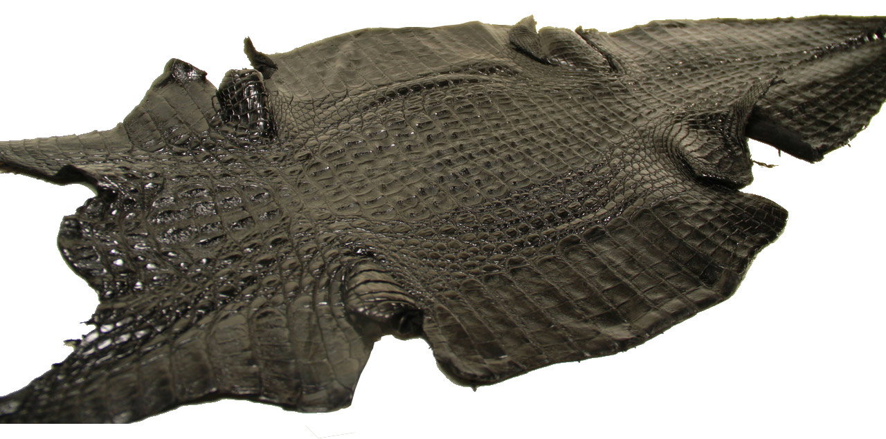 Genuine Caiman Crocodile Hornback Skin - Matte Finish in Black (XL)