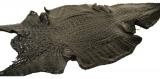 Genuine Caiman Crocodile Hornback Skin - Matte Finish in Black (XL)