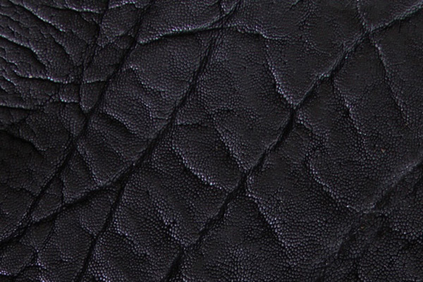 Elephant Skin in Black