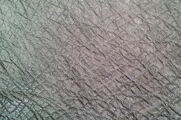 Elephant Skin in Grey