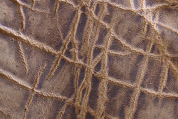 Elephant Skin in Peat Vintage
