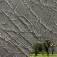 Elephant Leather