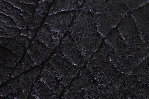 Elephant Leather Roje Exotic
