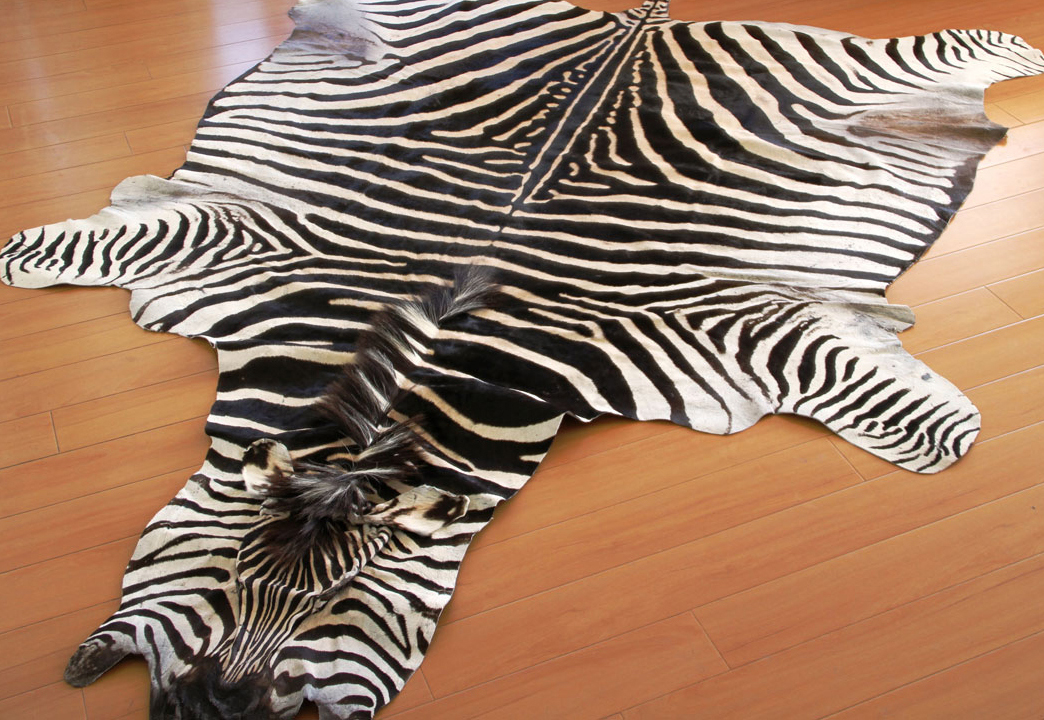 Brand-new Zebra Hides and Rugs | Roje Exotic Leather AO04